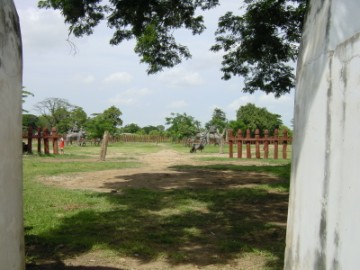 View of the kraal