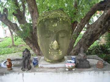 Old Buddha head in situ