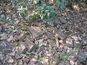 Brick remnants in situ
